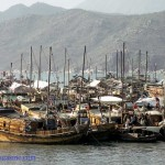 Tough life for Cheung Chau fishermen長洲漁民生計艱苦